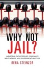 Why Not Jail? - Industrial Catastrophes, Corporate Malfeasance, and Government Inaction