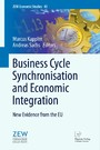 Business Cycle Synchronisation and Economic Integration - New Evidence from the EU
