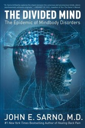 Divided Mind - The Epidemic of Mindbody Disorders